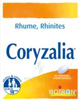 Boiron Coryzalia Comprimés Orodispersibles à SAINT-GEORGES-SUR-BAULCHE
