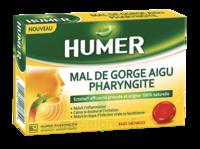 Humer Pharyngite Past Mal De Gorge Baies Sauvages à SAINT-GEORGES-SUR-BAULCHE